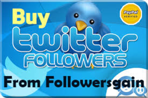 9 best  Ways to increase Twitter Followers for new business